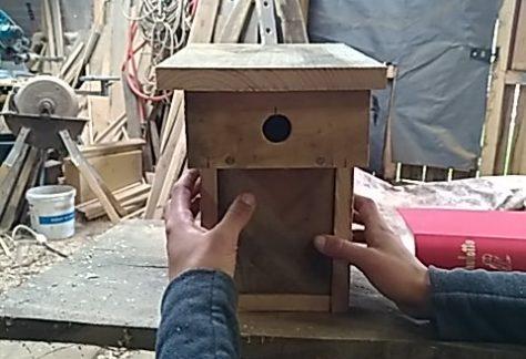 Construction de nichoirs