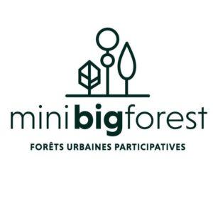 Mini big forest